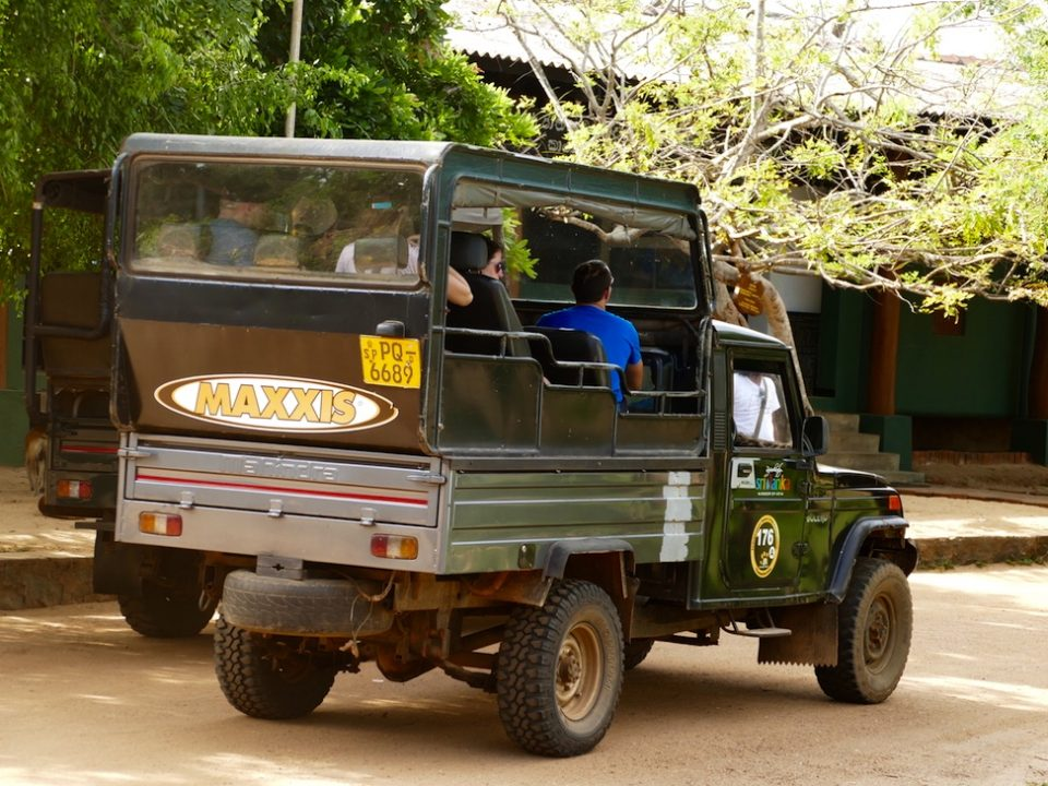 lucky-family-travel-blog-sri-lanka-safari-yala-national-park